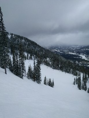Fernie Alpine - Amazing day playing in the bowls - ©anonymous