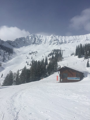 Fernie Alpine - Stellar conditions today.  Fresh powder and blue sky's  - ©Gary's iPhone