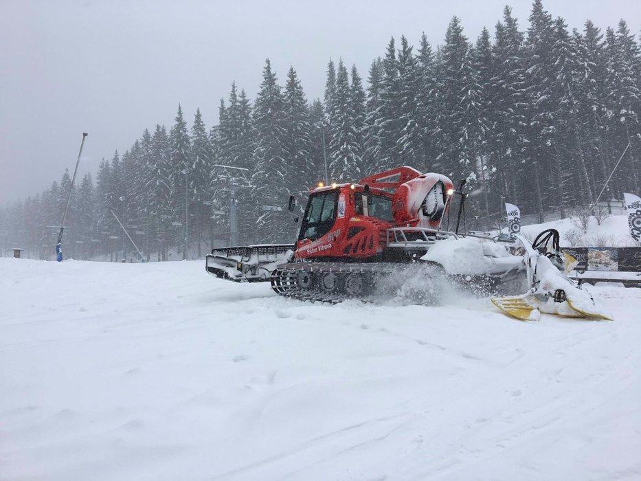 Čerstvý sneh pod Chopkom - Jasná 19.4.2017 - ©TMR, a.s.  facebook Jasná Nízke Tatry