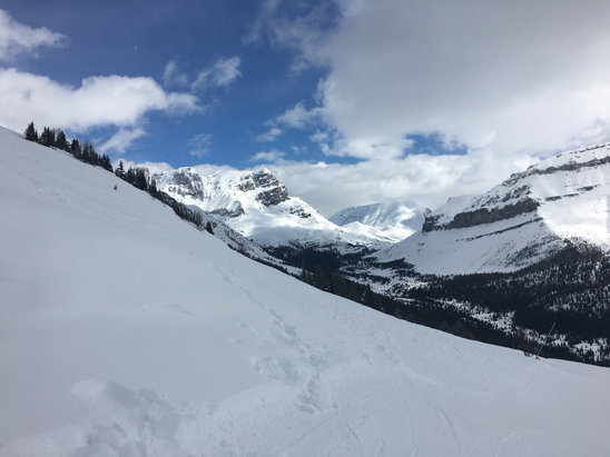 Lake Louise - Best spring coverage in years. Heavy leftover chop from dump a few days ago. Corn at bottom. Way above average conditions for time of season! - ©John's iPhone+