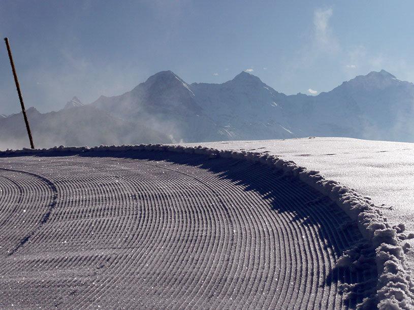 Eine präparierte Loipe im Skigebiet Beatenberg - ©Beatenberg Tourismus
