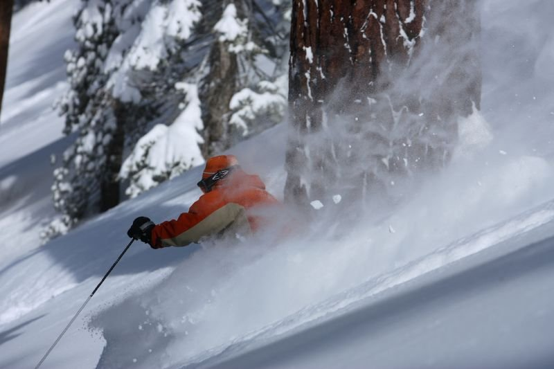 A skier avoids a tree while making new tracks at Heavenly Mountain Resort in South Lake Tahoe, California