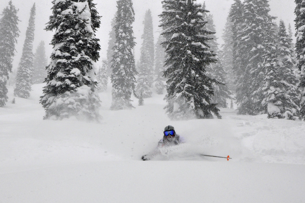 DEEP snow at CMH-Revelstoke - ©CMH Heli-Skiing