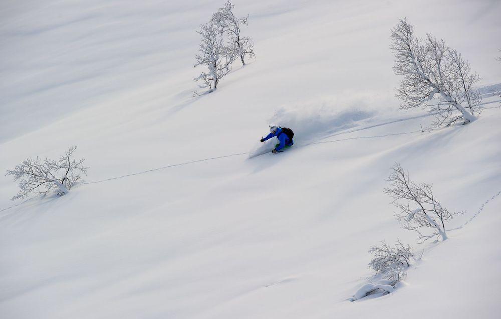 Myrkdalen powder - ©Sverre Hjørnevik