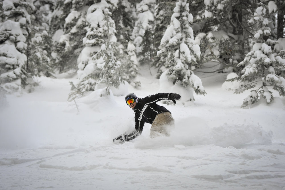 Fernie Alpine Resort powder
