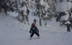 Skiers maneuver their way through the trees in Monarch Mountain, Colorado