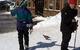 Even the birds came out to Alta for some fun in the sun. Photo by Liam Doran