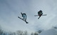 Pair of freestyle skiers at Wild Mountain MN