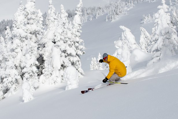 A skier rips up fresh powder in Gil's, the newly added terrain at Sun Peaks Resort. - ©Adam Stein