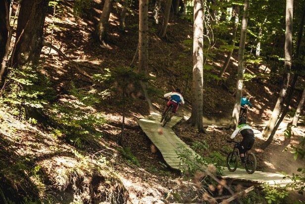 Mountainbike Park Pohorje