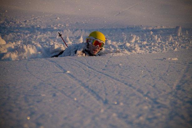 Sogn - Missing Link Jo Mork Foto: Sindre Kinnerød 677px
