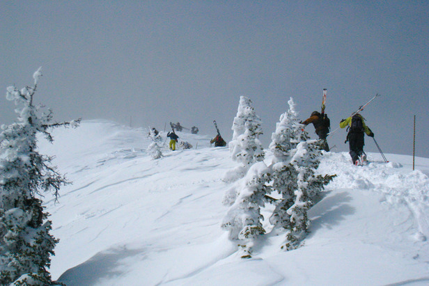 Hikers climbing the ridge at Bridger Bowl. Photo by Becky Lomax. - ©Becky Lomax
