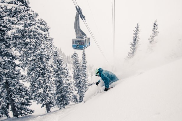 Snowbird athlete Ben Wheeler skis under the tram at Snowbird - ©Liam Doran