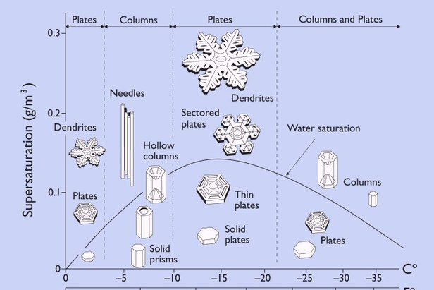 The size and shape of snowflakes is determined by the temperature and moisture content of the air. Large dendrite snowflakes create the lightest, fluffiest powder for skiers and riders. Temperatures between about 0-10 F and a high amount of moisture in th