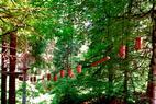 Hochseilpark Prau La Selva - ©Sportzentrum Prau la Selva