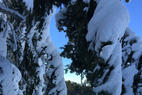 Mountain High - Awesome ! - Mountain High - Awesome