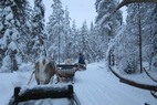 Lapland: A tale of Arctic exploration - ©Patrick Thorne