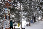 Aspen/Snowmass Tree Shrines: Hunter S. Thompson Shrine