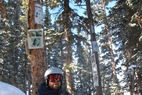 Aspen/Snowmass Tree Shrines: John Denver Shrine