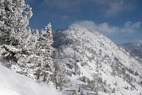 Where's the Snow this Weekend: Rockies Report 1/9/2014 - ©Lee Cohen