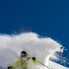 Powder at Alta