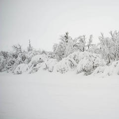Pudder på Geilo, 2. desember 2015 - ©Eirik Aspaas