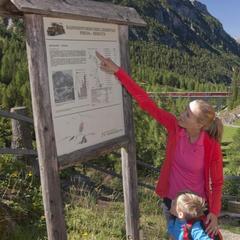 Wandertipp Via Albula / Bernina: Von Filisur bis Bergün - ©Cordula Seiler / Graubünden Ferien