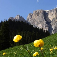 24lug_Dolomiti-Trentino