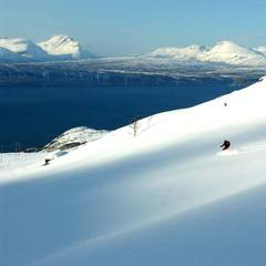 Narvik - photo: Jeff Webb - 677px