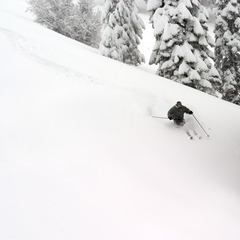 Freedom Pass gets you unrestricted access to some of Southern CA's best terrain all season long.