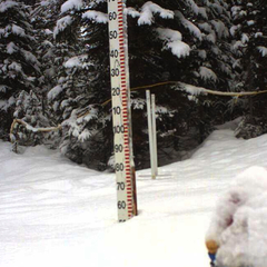 Snow piles up at the Wawa Snow Study Plot at Sunshine Village. Photo courtesy of Sunshine Village webcam.