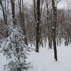 Burke is known for its expansive off-piste terrain. Photo Courtesy of Burke Mountain Resort, flickr.