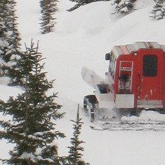 The Powder Stagecoach hauls cat skiers at Castle Mountain. Photo by Becky Lomax.