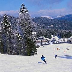 Point neige dans les Vosges (28/02/2013)