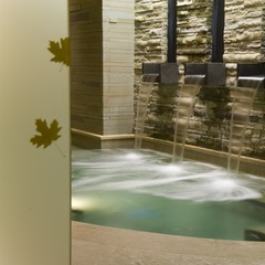 Caldarium Pool view at the spa at Park Hyatt Beaver Creek Resort and Spa.