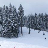 Čerstvý sníh v Čechách - © facebook Rališka