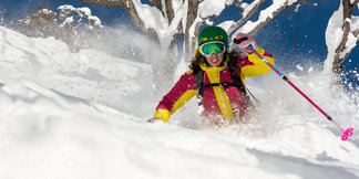 Vail Resorts Adds $99 Military Epic Pass, Japan & Powder Highway ©Caroline Van T Hoff