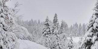 Weerbericht: storm en meer sneeuw op komst ©https://www.facebook.com/WilderKaiser/