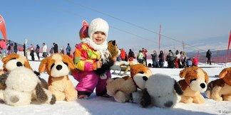 Do Tatranskej Lomnice mieria Snežné psy ©Marek Hajkovský