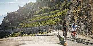Zwitserland focust deze zomer op de fietstoerist ©Switzerland Tourism - Andre Meier