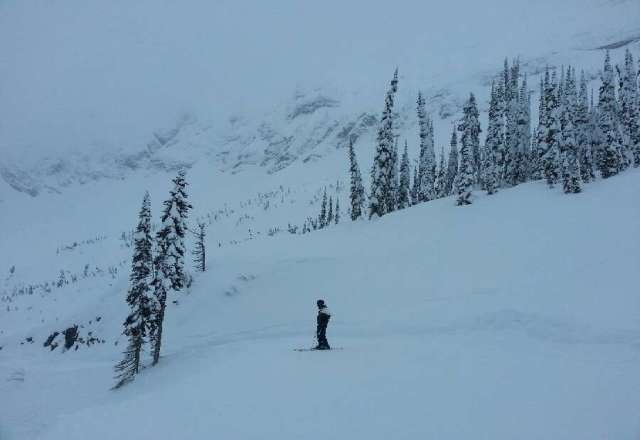 awsome powder today up top. snowing most of the day.