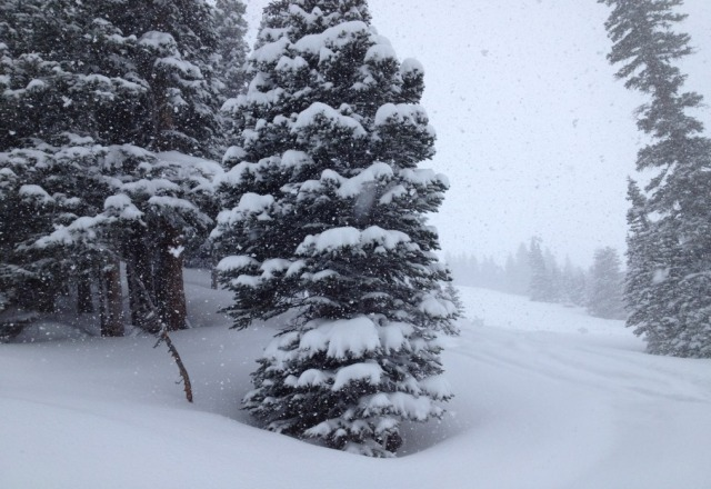 Wednesday was insane! pow pow all the way, gorgeous snow to close the season! thanks loveland!