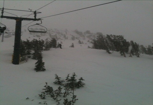 powder was epic! so fun today but super windy