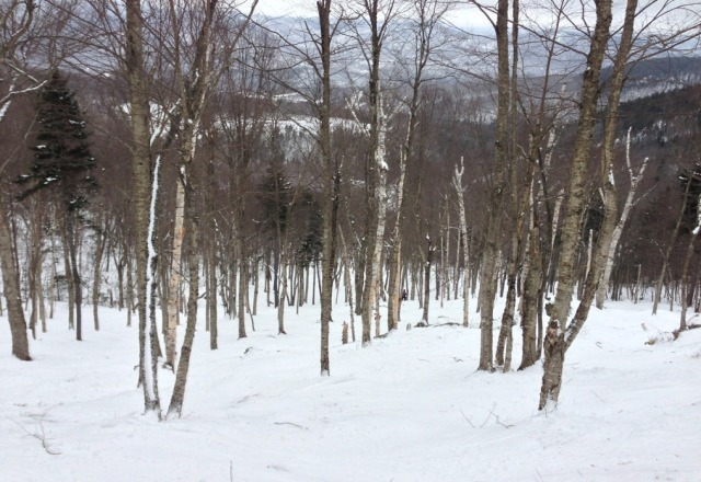 great skiing at sunday river 21at thru 23rd. short-to-no lift lines, great snow!!