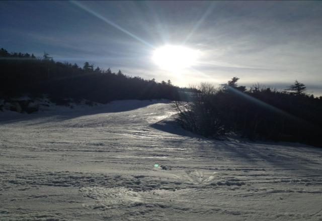 awesome spring skiing janurary!