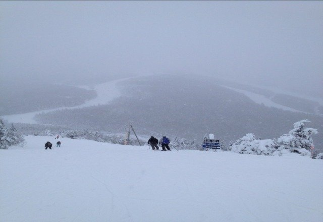 snow is falling steadily and the skiing is amazing.  conditions are the best.
