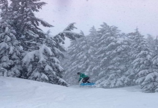 Whiteout. Epic powder day on Sunday!!