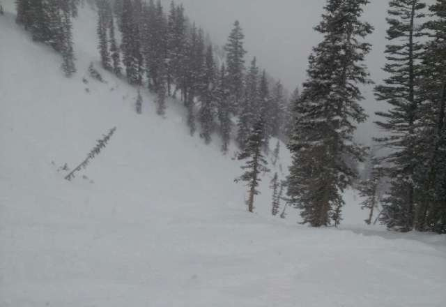 Awesome day at Alta today snow was great, white out conditions at the end of the day. Freshies all day.