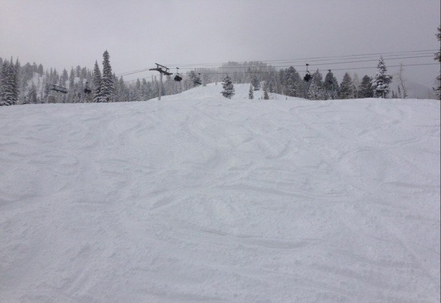 best skiing ever. deep perfect powder and still snowing.
