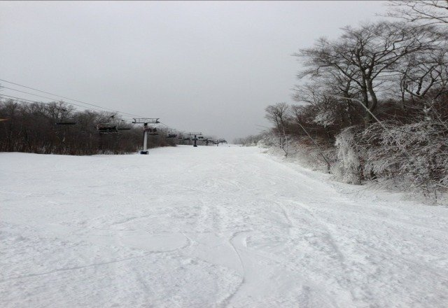good skiing; not very crowded; cold; little ice